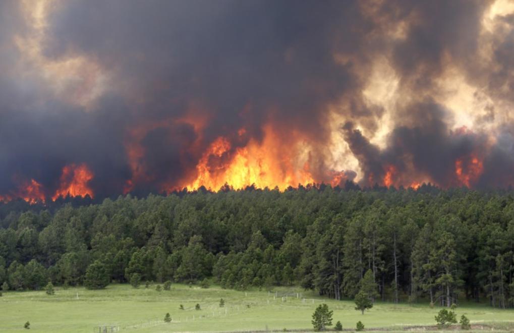 natuurbranden
